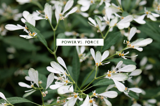 PowerVsForce