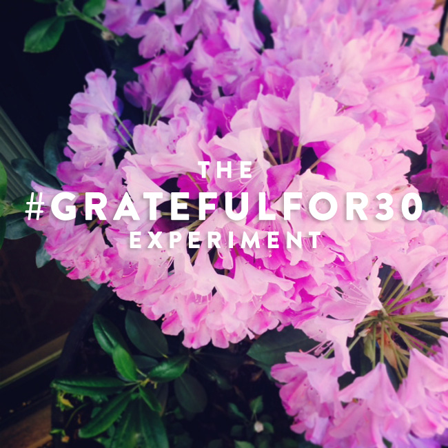 The#GratefulFor30Experiment