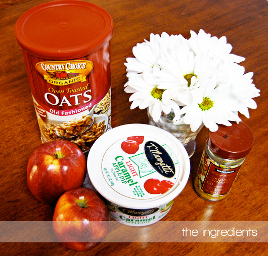 ingredientsapplecarameloatmeal